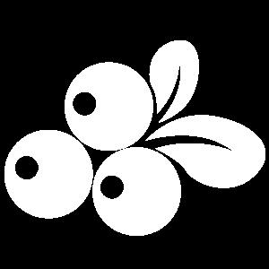 acai-oil-white