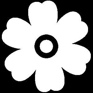 chamomile-extract-white