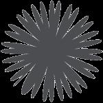 redensyl-grey